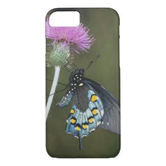 Pipevineのアゲハチョウ、Battusのphilenor、大人 iPhone 8/7ケース