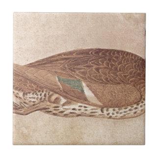 Pisanello著アヒル タイル