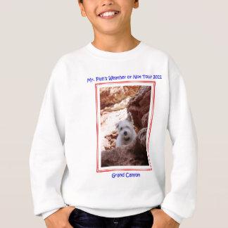 Pish Explores氏グランドキャニオンのTシャツ スウェットシャツ