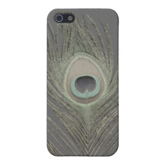 PixDezinesの孔雀plume/DIYの背景 iPhone 5 ケース