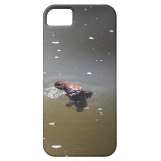 PLATPUS EUNGELLAの国立公園オーストラリア iPhone SE/5/5s ケース