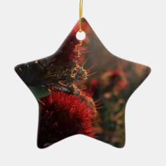 Pohutukawaの赤い木によってはニュージーランドのクリスマスが開花します セラミックオーナメント