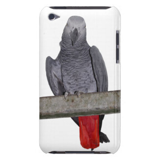 Polly ipod touchの例 Case-Mate iPod touch ケース