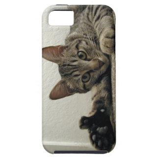 Polydactyl子猫猫ミラは親指をあきらめます!  =^。^= iPhone SE/5/5s ケース