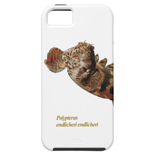 """Polypterus endlicheri ""のiPhone 5 Case,No.01 iPhone SE/5/5s ケース"