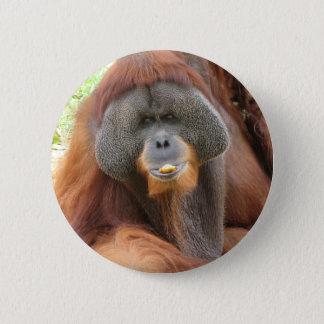 Pongoのオランウータンのサル円形Pin 缶バッジ