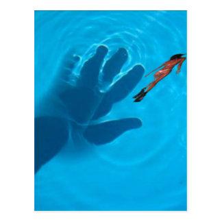 pool.jpgの手 ポストカード