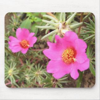 Portulacaの花 マウスパッド