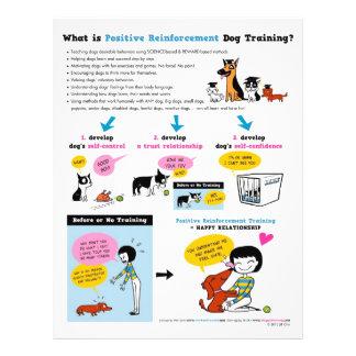 Pos Reinfはである何。 犬の訓練か。 フライヤ チラシ