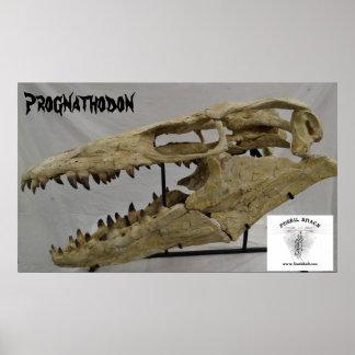 Prognathodon Mosasaur ポスター