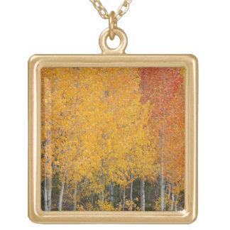 Provoの川および《植物》アスペンの木13 ゴールドプレートネックレス