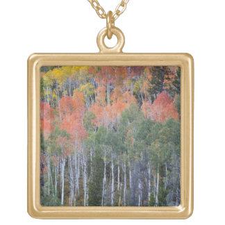 Provoの川および《植物》アスペンの木16 ゴールドプレートネックレス