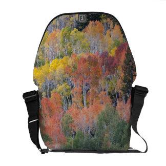 Provoの川および《植物》アスペンの木16 メッセンジャーバッグ