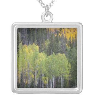 Provoの川および《植物》アスペンの木2 シルバープレートネックレス