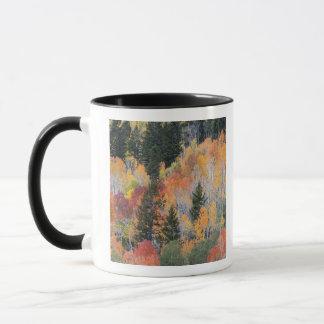 Provoの川および《植物》アスペンの木4 マグカップ
