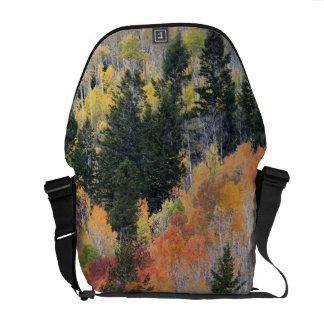 Provoの川および《植物》アスペンの木4 メッセンジャーバッグ
