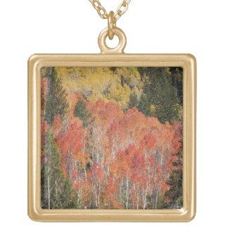 Provoの川および《植物》アスペンの木6 ゴールドプレートネックレス