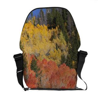 Provoの川および《植物》アスペンの木6 メッセンジャーバッグ
