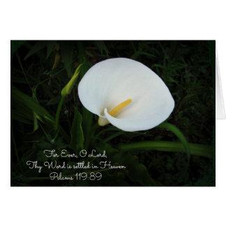 Pslams 119のオランダカイウのLillyの挨拶状 カード