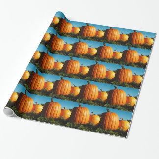 Pumpkins_Hancock_Shaker_village_2418 ラッピングペーパー