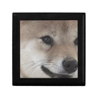puppy ギフトボックス