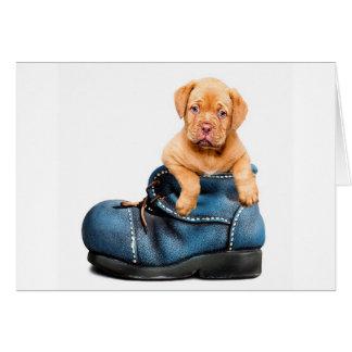 puppy-1154468_640 グリーティングカード