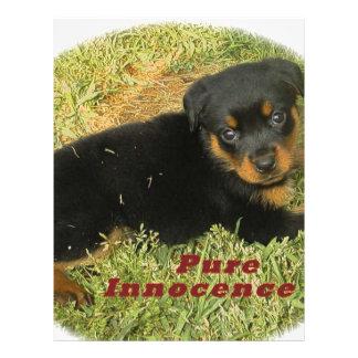 pureinnocenceのロットワイラーの子犬 レターヘッド