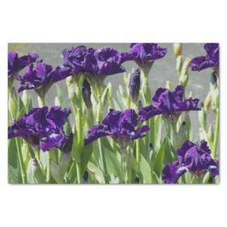 Purple Irises Floral 薄葉紙