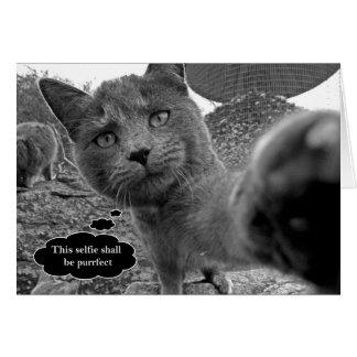 Purrfect Selfieのメッセージカードを取っている猫 カード