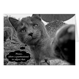 Purrfessionalのカメラマン猫のメッセージカード カード