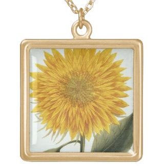 「Pythanthoza Iconographからの菊Indicum ゴールドプレートネックレス