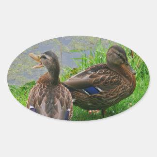 Quackingのアヒル 楕円形シール