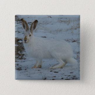 R0023かんじきノウサギ 5.1CM 正方形バッジ