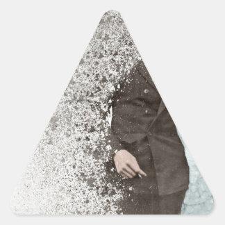 R36 三角形シール