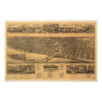Racine郡1883年のRacineウィスコンシンの郡の首都 ウッドウォールアート