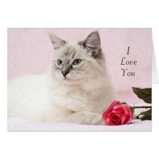 Ragdollのバレンタインカード カード