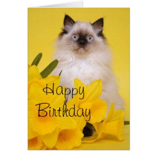 Ragdollの子ネコの挨拶状 カード