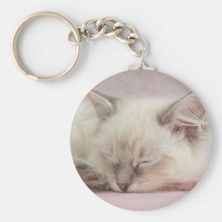 ragdollの子ネコのkeychain キーホルダー
