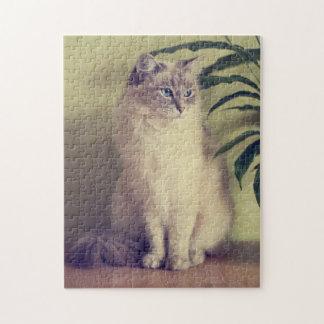 Ragdoll猫のジグソーパズル ジグソーパズル