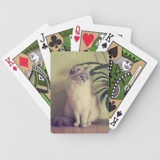 Ragdoll猫のトランプ バイスクルトランプ