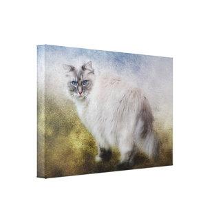 Ragdoll猫のファインアートのキャンバス キャンバスプリント