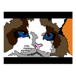 Ragdoll猫の郵便はがき ポストカード
