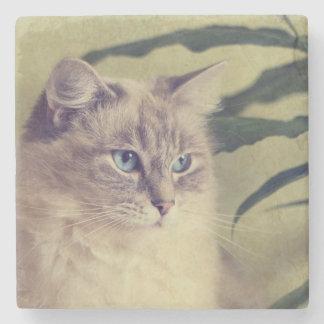 Ragdoll猫 ストーンコースター
