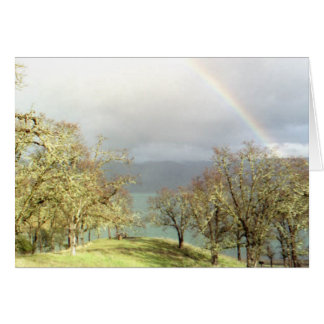 rainbow湖 カード