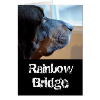 Rainbow Bridge coon hound カード
