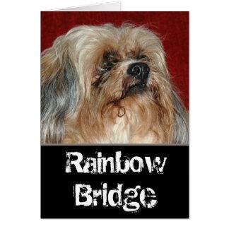 Rainbow Bridge - my buddy カード