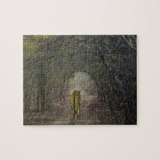 Ranthamboreの森林のベンガルトラ ジグソーパズル