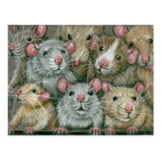 Rattieの懇親会の郵便はがきのラットの束 ポストカード