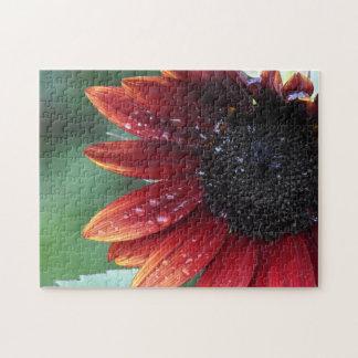 Red Sunflower Petals And Rain Drops ジグソーパズル