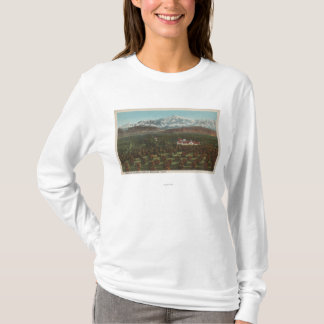 Redlands、カリフォルニア-山及び果樹園場面 Tシャツ